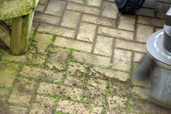 A weed brush removing estabished moss growth from a block paved surface in a garden centre.